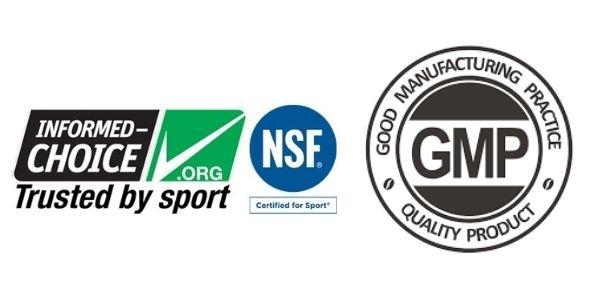NSF GMP Logos